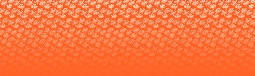 170305-bg-orengeflower